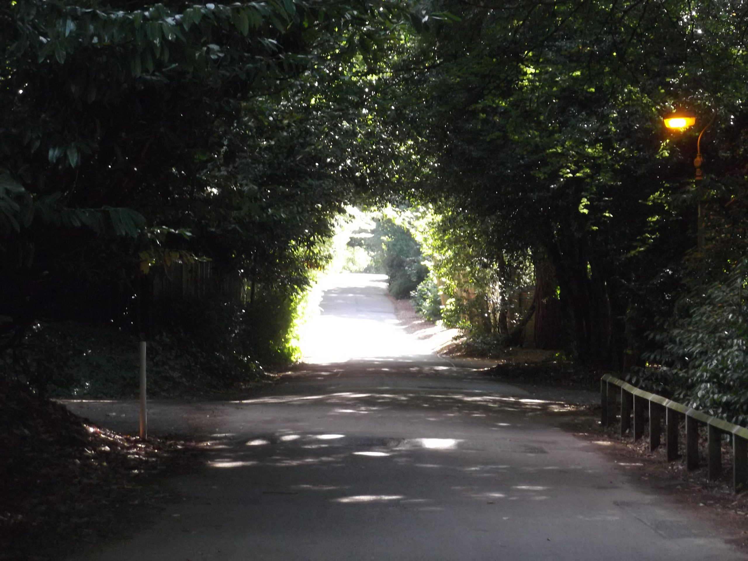 Pullens Lane